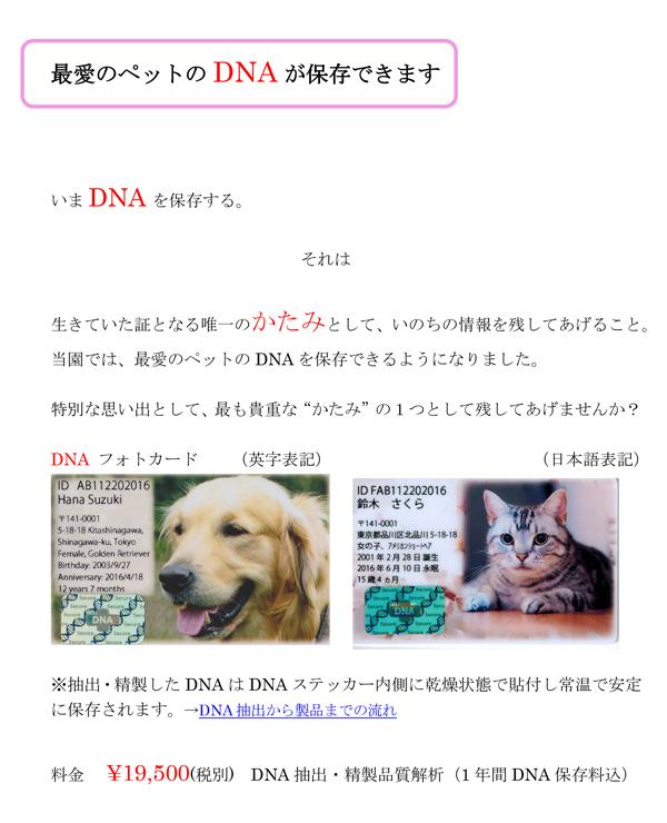 DNA Assist