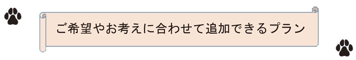 Tsuikaplan